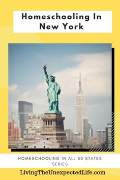 Homeschooling IN New York Are you looking to start homeschooling in New York? Maybe you Homeschool Blogs, How To Start Homeschooling, History Teachers, History Class, Bible Study Tips, Student Success, Living In New York, Meeting New People