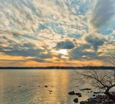 View of the Potomac from a walk at the Occoquan Bay National Wildlife Refuge.