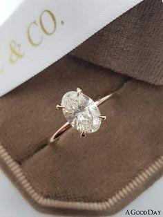 Morganite Engagement, Halo Diamond Engagement Ring, Engagement Ring Settings, Diamond Wedding Bands, Oval Wedding Rings, Oval Rings, Oval Morganite Ring, Crown Rings, Women's Rings