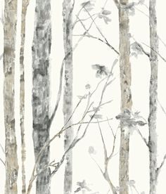 RoomMates RMK9047WP Birch Trees Peel and Stick Wall Decor