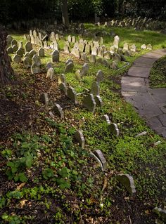 Hyde Park Pet Cemetery in London, I didn't know this was in Hyde Park.