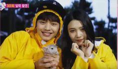 BTOB's Sungjae and Red Velvet's Joy invite a chinchilla to 'We Got Married' calendar shoot Sungjae And Joy, Sungjae Btob, Wgm Couples, Cute Couples, South Korean Girls, Korean Girl Groups, Yongin, We Get Married, Red Velvet Joy