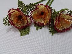İğne oyaları yaban sarmaşık çiçeği