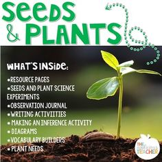 Seeds and Plant Unit