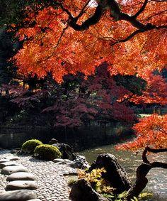 Koishikawa-Korakuen-Gardens-Tokyo-Japan