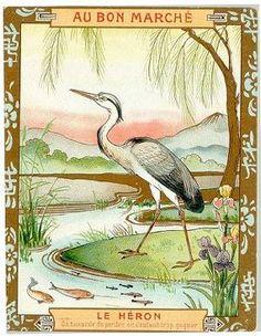 Felix lorioux illustration pour le corbeau et le renard de jean de lafontaine - Dessin le renard et la cigogne ...