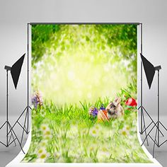 5x7ft Spring Easter Photography Props Red Eggs Flowers Ph... https://www.amazon.com/dp/B01MT34HFC/ref=cm_sw_r_pi_dp_x_RoHRybEHGSTA0