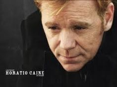 David Caruso as Horatio Caine