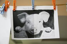Great drawing class: Symmetry sketches -- finish the other side. free printables too. Teaching Drawing, Drawing Lessons, Teaching Art, Middle School Art Projects, 6th Grade Art, Art Worksheets, Art Lessons Elementary, Art Lesson Plans, Art Classroom