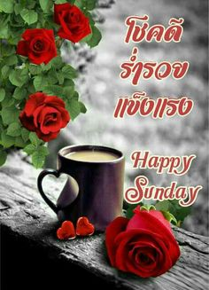Say Hi, Happy Sunday, Good Morning, Mugs, Tableware, Pictures, Red, Buen Dia, Photos