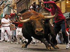 Running of the Bulls    (Pamplona, Spain)    Oh, to run with the bulls...or just rent an apartment a year or two in advance so you won't have to deal with the crowds...or bulls coming at you.