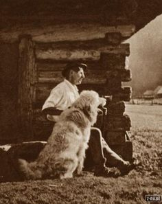 Stare zdjęcia - Zakopane, Tatry i Podhale - Zakopiański Portal Internetowy - z-ne.pl Romania People, Great Pyrenees, Happy Summer, Mountain Dogs, My Heritage, Historical Pictures, Livestock, Krakow, Homeland