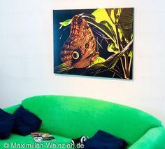 Maximilian Weinzierl – Fotografie – Blog: Costa Rica an der Wand