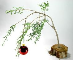 This instructable shows how to find the true meaning of Christmas. It's not about fancy aluminum Christmas trees, real estate, a blue ribbon for the ...