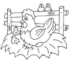 Dibujo de gallinas para colorear