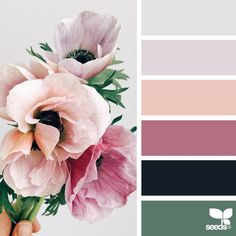 """2,338 Likes, 19 Comments - Jessica Colaluca, Design Seeds (@designseeds) on Instagram: """"today's inspiration image for { flora hues } is by @kylaferguson ... thank you, Kyla, for another…"""""""
