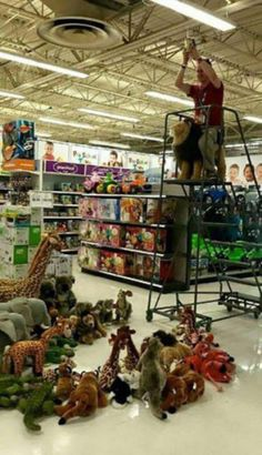 Re-enacting the Lion King intro at Toys R' Us
