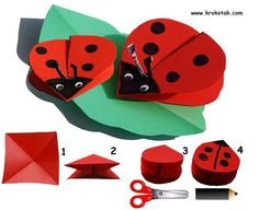 Ladybird origami