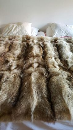 24 Coyote pelts for one of our luscious king fur blankets. A pleasure to sleep/use under, over and all around.