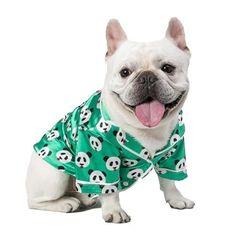 Luxurious Satin Panda Dog PJs - Green / XS