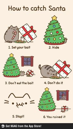 Pusheen Christmas!