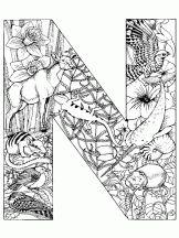 alphabet animal n