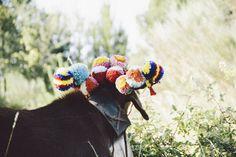 chibo by Rosa Pomar, via Flickr Ravelry, Riding Helmets, Portugal, Portuguese, Tassels, Europe, Spaces, Inspiration, San Antonio