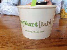 Yogurt lab.