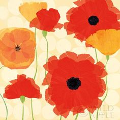 California Poppies and Dots - 35x35  - 35x35 by