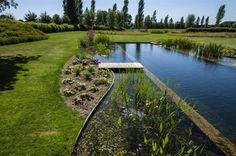 Biotop zwemvijver aanleggen? Watelle! Met een Biotop zwemvijver krijgt u de natuurlijke uitstraling van een vijver en het zwemcomfort van een zwembad.