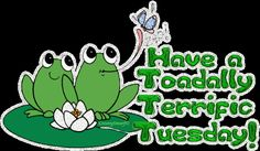 Toadally terrific tuesday