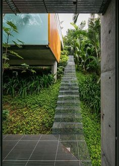 how to grow plants Haus Wochenende in Sao Paulo Verfgt ber Low Impact Landschaft Treppe Architecture Details, Landscape Architecture, Interior Architecture, Landscape Design, Sustainable Architecture, Classical Architecture, Ancient Architecture, Landscape Stairs, Design Exterior