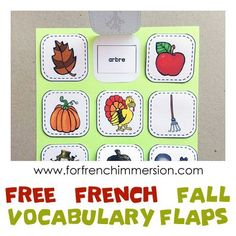 FREE French Vocabulary Practice - Fall Words - interactive vocabulary flaps.