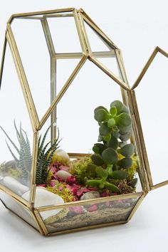 Urban Outfitters - Geo Crystal Terrarium