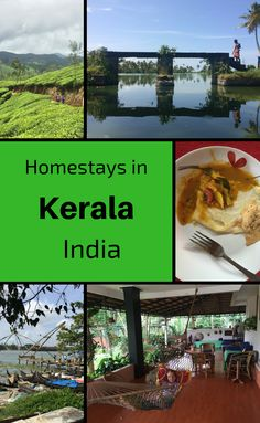 Reasons why you should stay at a homestay in Kerala.