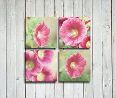 Set of 4 5x5 in. Pink Flower Photographs  Pink by EmeraldTownRaven, $25.00