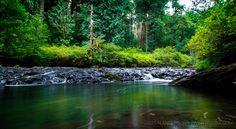 Silver Falls Creek  Oregon [OC] [5123 x 2818px]