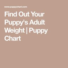 Find Out Your Puppy's Adult Weight | Puppy Chart