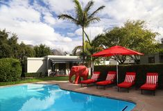 Avondrood's 's red loungers and crystal blue pool are beautifully complimented by the lush green garden. Cape Dutch, Blue Pool, Green Garden, Lush Green, Modern Luxury, Crystal, The Originals, Country, Outdoor Decor