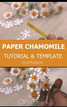 Paper Chamomile tutorial: so easy to make a realistic. Paper Daisy, Paper Flowers, Paper Art, Paper Crafts, Diy Crafts, Leaf Template, Flower Center, Frame Crafts, Create And Craft