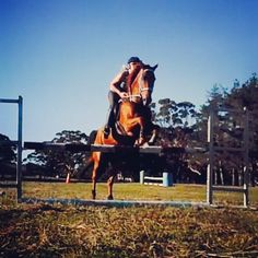 Jumping 1metre :) so proud of my Wally boy ❤️