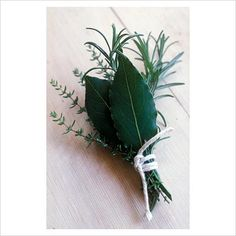 Bouquet garni - Bay, Rosemary, Thyme - Image No: 0048593 - GAP Gardens, garden and plant stock photography Lists To Make, Garden Plants, Bouquet, Stock Photos, Wallet, Tattoos, Google, Image, Photography