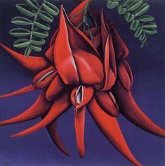 Kaka Beak by Diana Adams for Sale - New Zealand Art Prints Nz native plant