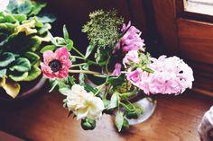 Ramo de Eléboro, jacinto, anémona, rosa y Ammi majus