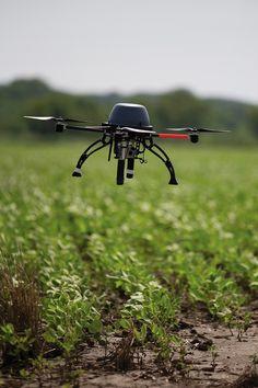 Octane UAV / Drone flying over soybeans