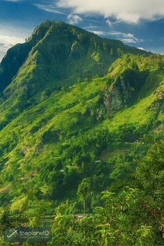 The Lush green hills of Central Sri Lanka >> Discover the beauty of Sri Lanka with these Photos | The Planet D Adventure Travel Blog | We have a soft spot for Sri Lanka, it is often at the top of our list of places we recommend to visit. We hope that after viewing these photos, you will feel the same way.: