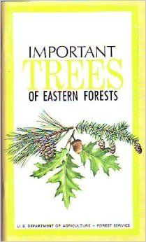 Important Trees of Eastern Forests: Frank Brockman, Rebecca Merrilees: Amazon.com: Books