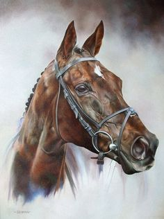 Denman Limited Edition Horse Racing Print by Equestrian Artist Joanna Stribbling Painted Horses, Cross Paintings, Animal Paintings, Pastel Paintings, Horse Drawings, Animal Drawings, Pretty Horses, Beautiful Horses, Arte Equina