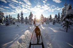 Lappland >3