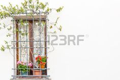 geranium flowers: ventana con reja de hierro y macetas: rojo y fucsia geranio